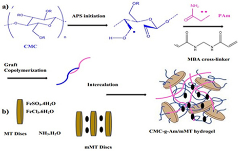 Magnetic/pH-sensitive nanocomposite hydrogel based carboxymethyl cellulose –g- polyacrylamide/montmorillonite for colon targeted drug delivery
