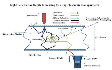 Engineering of core/shell nanoparticles surface plasmon for increasing of light penetration depth in tissue (modeling and analysis)