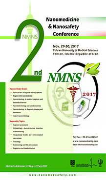 The second Nanomedicine and Nanosafety Conference (NMNS 2017)